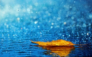 Rain-Falling-Desktop-Backgrounds